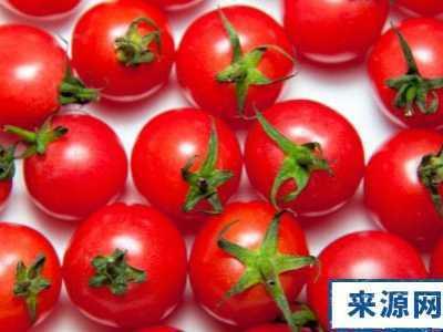 什么东西可以补肾 男人吃什么水果好10种水果补肾精